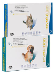 Revolution for Cats & Dogs