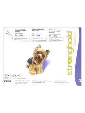 Stronghold for Cats & Dogs